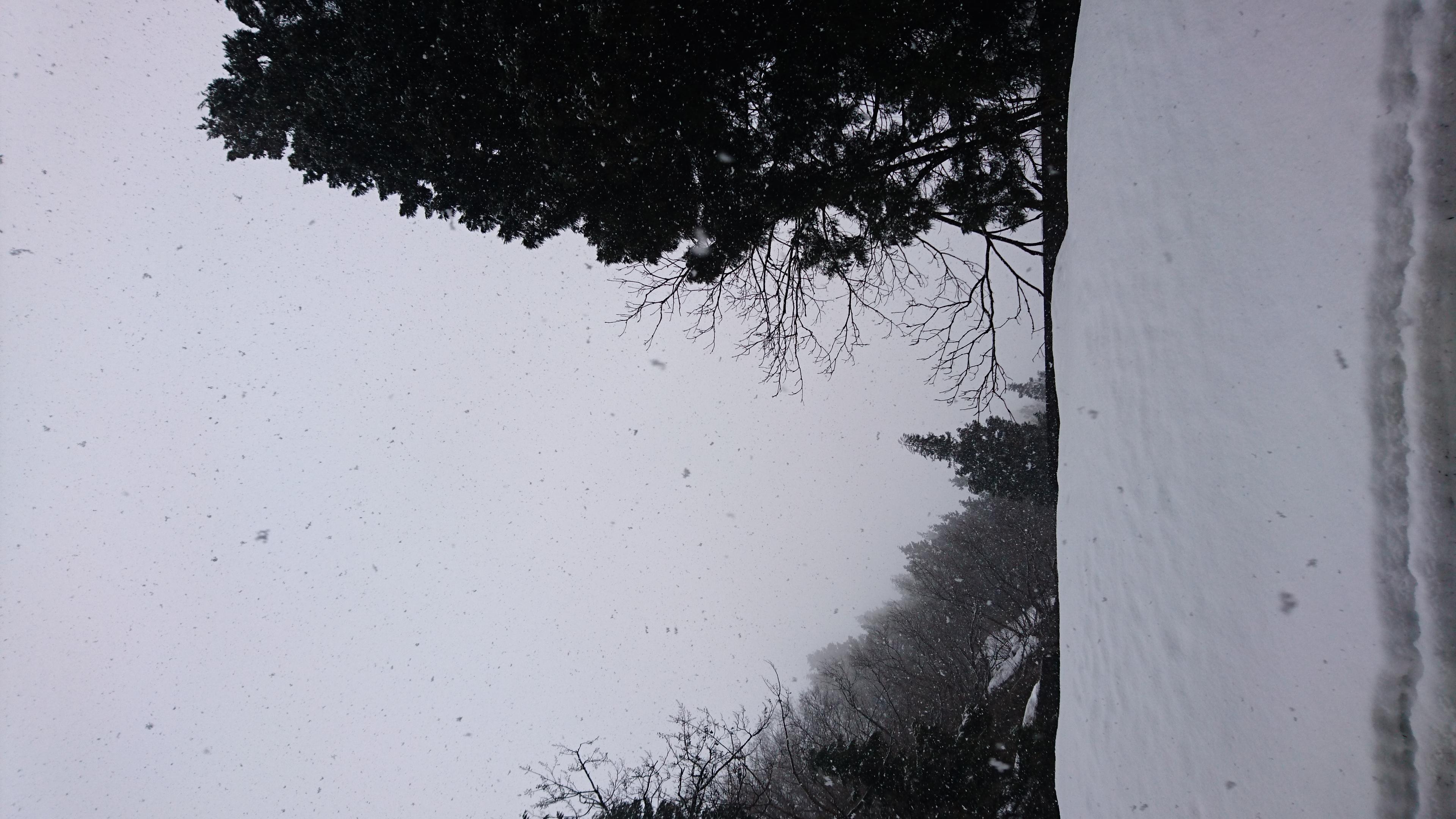 清水 くるみ  雪だー!