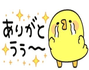 冬月 ゆきな 11/09 19:12 S様お礼♪