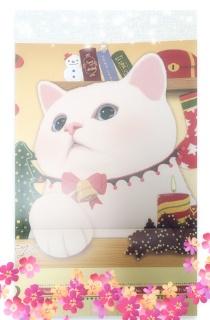 鈴木あんな  ☆クリスマス☆