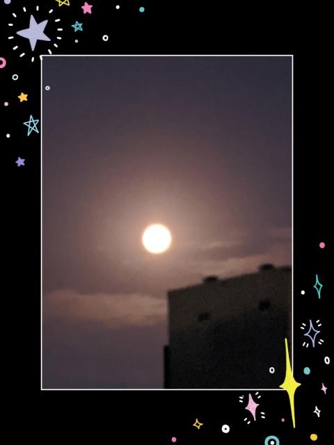 椿 せな  今夜は月明かりで
